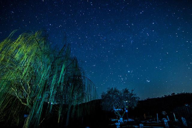Notte delle stelle