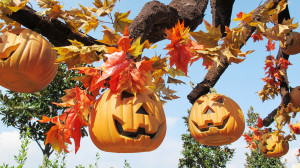 Halloween Leolandia