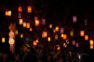 Festa delle Lanterne_Oasi di Galbusera Bianca