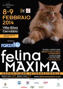 Feklina Maxima5