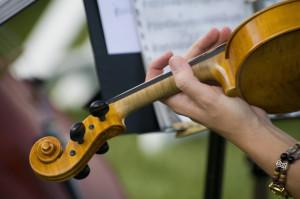 violino closeup 2