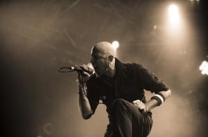 Negrita-live2