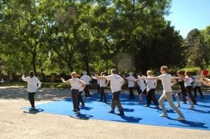 scuola-tai-chi-zona-4-movimento