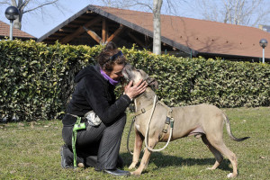 Parco Canile comunale (8)