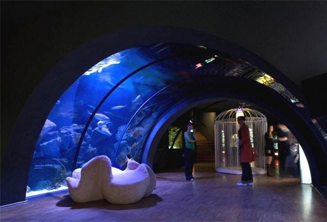 acquario-civico-milano