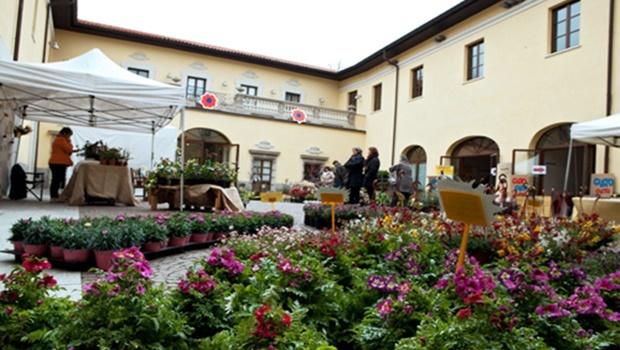 Arte e Natura Fiori in Villa Parabiago