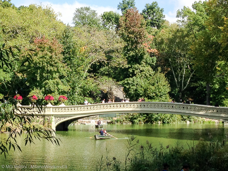 New-York-cose-da-sapere-Central-Park