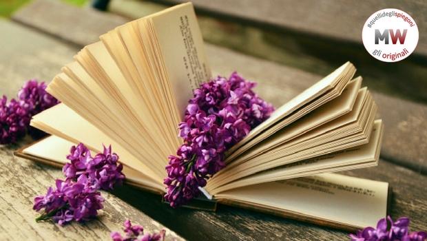 spiegone libri