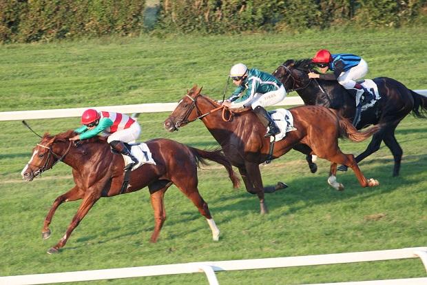 eventi-equitazione-lombardia-2