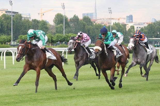 eventi-equitazione-lombardia-3